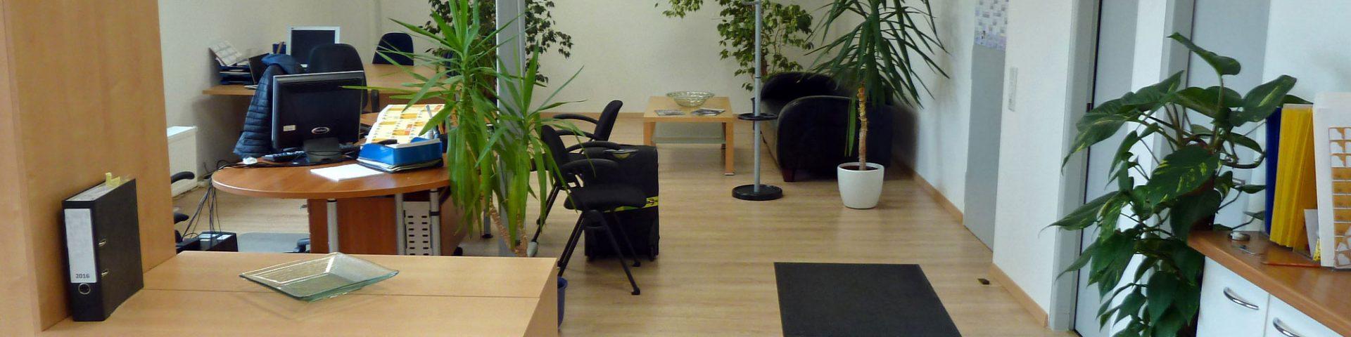 Mietobjekt Bürofläche Olchinger Hauptstraße - Großraumbüro